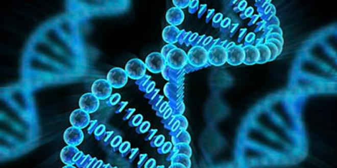 Генетические причины возникновения прыщей (акне, угрей, комедонов)