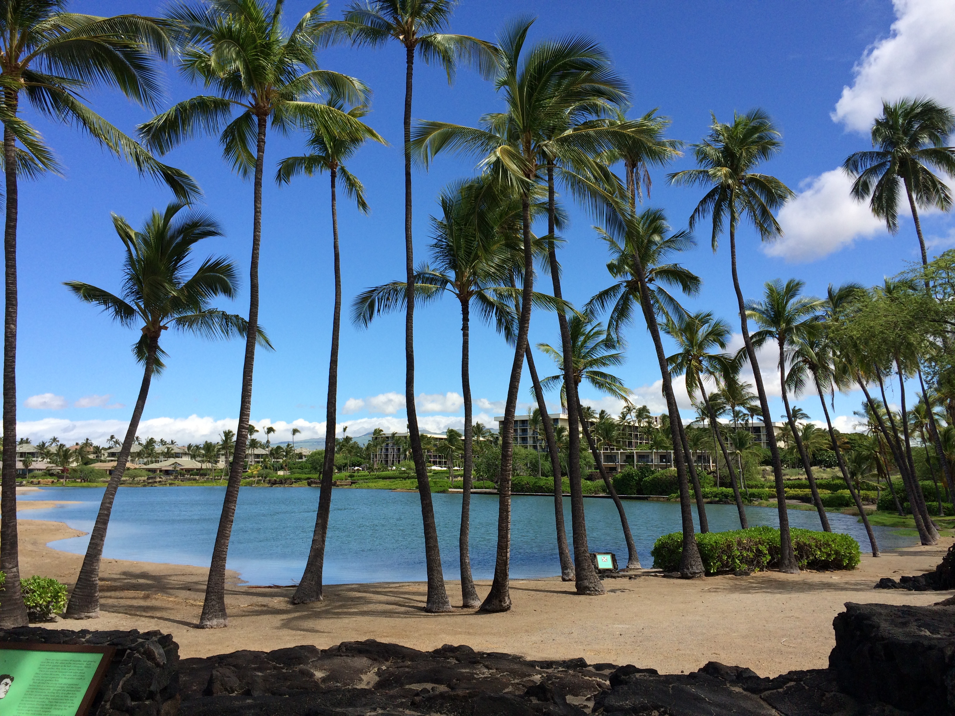 Пляжи Большого острова Гаваев: anaehoomalu bay big island