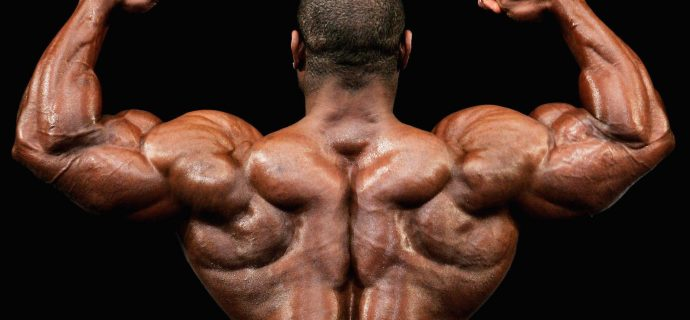 Локализация стероидных акне
